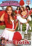 Transsexual Cheerleaders Vol. 13 (Devils Film)